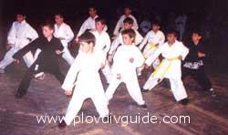 Martial Arts demonstartion