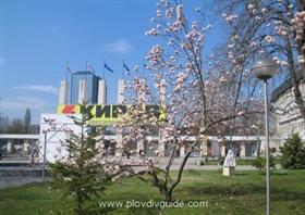 Новините от Пловдив и региона