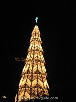 15-meter tall Christmas tree will be standing on the Stefan Stambolov Square