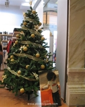 Die Lichter des Weihnachtsbaums werden morgen angezündet