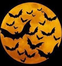 Plovdiv marks European Bat Night