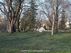 6. Tsar Simeon\\'s Garden