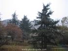 Dzhendem Tepe hill