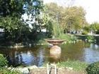 The small lake.