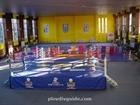 2.Botev Boxing Hall