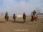 2.Heros Horse Racing Club
