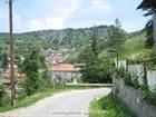 The Borovo village